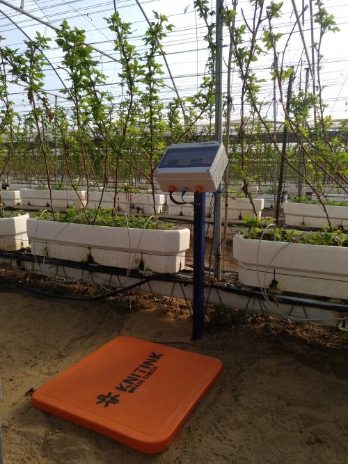 Famidan implanta un sistema de demostración de riego a demanda dentro del proyecto Ferdoñana