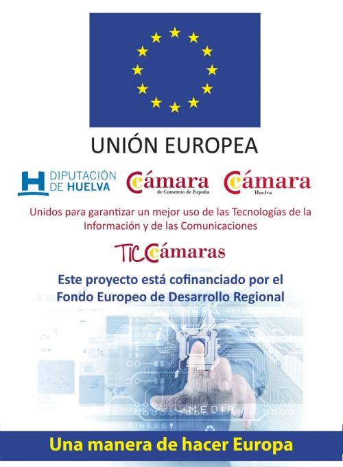Implantación de herramienta de gestión ERP con ayuda del programa TICCámaras